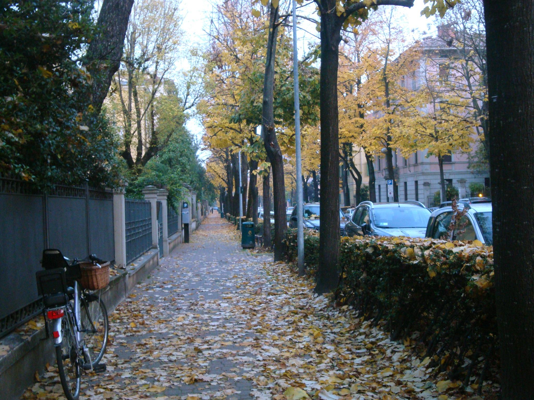 Via Campanini, where we lived